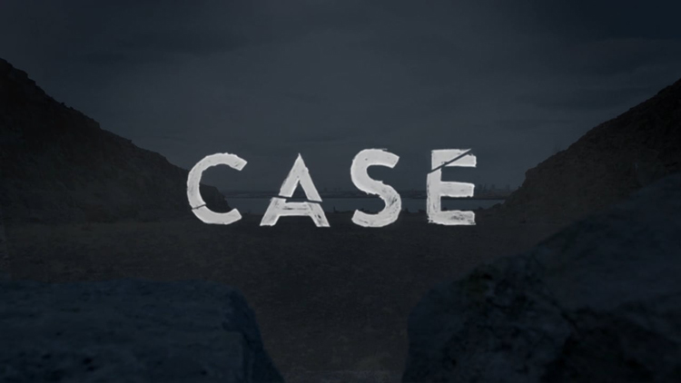 A Very Interesting 'Case' TV Show on Netflix